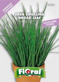 Erba Cipollina Broad Leaf - Busta Sementi Aromatica - L'ortolano Fioral