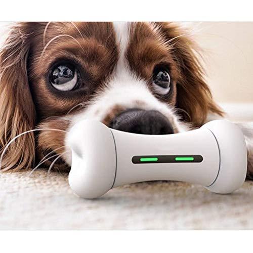 (Intelligenz Interaktiv Hundespielzeug&Katzenspielzeug,Wicked Elektrisch Unzerstörbar Hundeknochen - 9 Sportmodi - 12 Emotionales System - FDA Sicheres Material-Hunde&Katzen Zubehör Für Unterwegs,Bones)