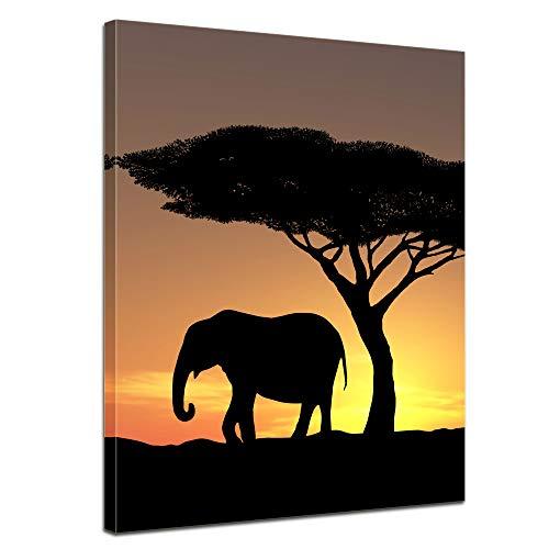 Bilderdepot24 Cuadros en Lienzo Familia Elefantes - 40 x 50 cm -...