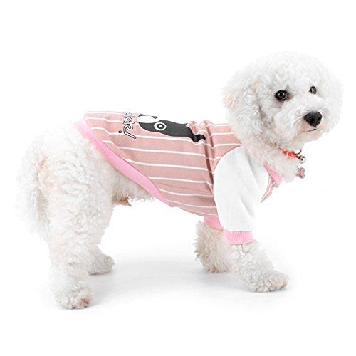 ranphy Baseball Hund Jacke für Hund Katze Haustier Swearshirt Yorkie Jacke Herbst Hund Bekleidung Chihuahua Kleidung Kostüm