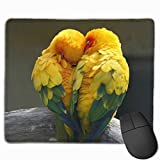 J5E7JYTE Mouse Pad Parrots Love Rectangle Non-Slip 9.8in11.8 in Unique Designs Gaming...