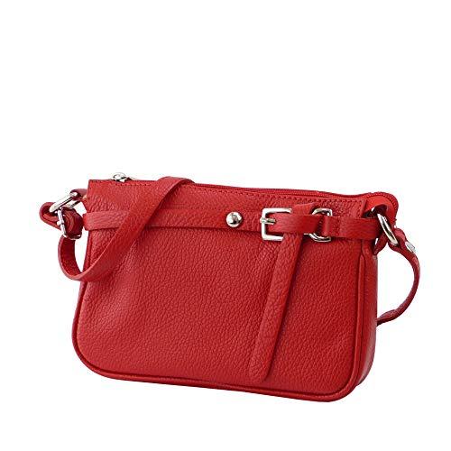 SH Leder ® Echtleder Umhängetasche kleine Tasche Crossbody Bag Messenger Handtasche mit Reißverschluss - Abendtasche City Clutch Party - 22x15cm Yvonne G157 (Rot) -