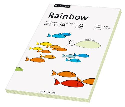 Papyrus 88042587 Druckerpapier Rainbow 80 g/m², A4 100 Blatt hellgrün