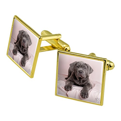 Graphics and More Neapel Mastiff Hund in Bett Eckig Manschettenknopf Set Gold Farbe (Elegant-bett-satz)