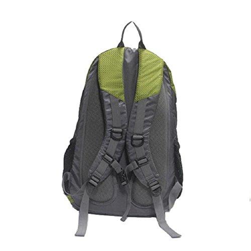 LF&F Backpack 30 Liter KapazitäT Outdoor Sport Rucksack Wasserdichte Freizeit Nylon Reisetasche Einfache Multifunktions Student Tasche Unisex Daypacks C