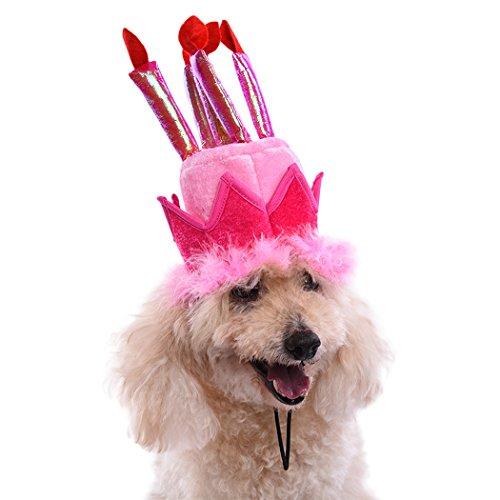 g Einstellbar Rosa Hund Geburtstag Hute Cartoon Geburtstag Kuchen Kerzen Mütze Hunde Geburtstag Partei Deko Sachen Zubehör Geschenke für Hunde Welpen (Geburtstagskuchen Cartoon)
