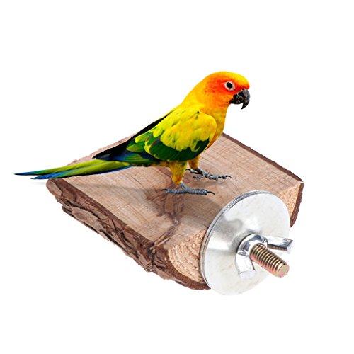 Jiamins Papagei-Stange-Vogel-Spielzeug-hölzerner Stand-Halter-Plattform-Eichhörnchen-Chinchilla-Gestell-Käfig (Stand Käfig Den Für Vogel)