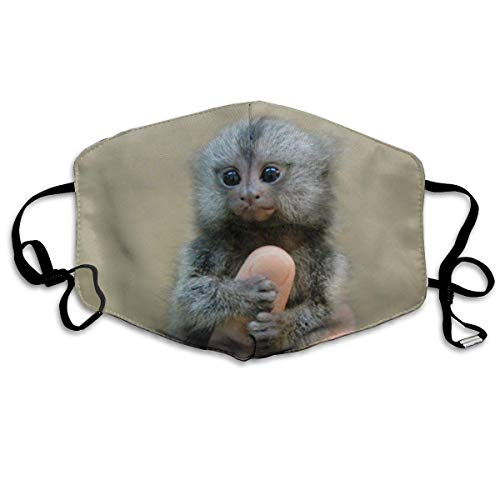 Masken,Masken für Erwachsene,Marmoset and Capuchin Monkeys Washable and Reusable Cleaning Mask,For Allergens,Exhaust Gas,Running,Cycling,Outdoor Activities