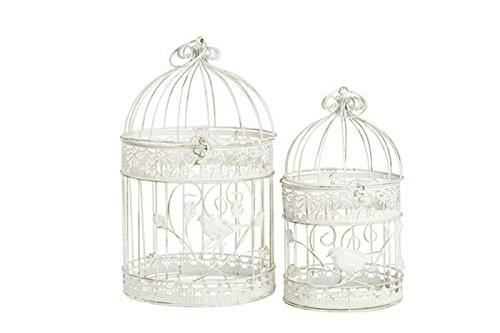 Lot de deux Cages en fer blanc
