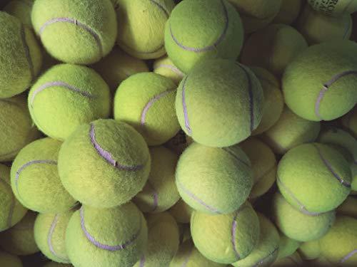 Tennisbälle für Hunde, gebrauchte Bälle von großen Herstellern wie Slazenger, Dunlop, Wilson Head etc.