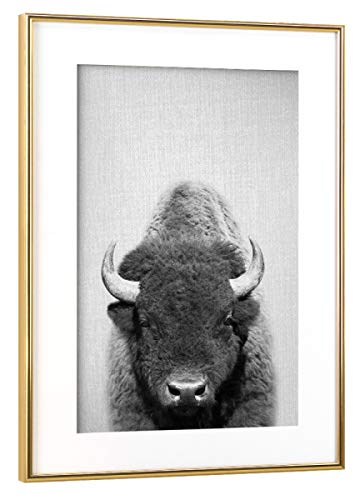 artboxONE Poster mit Rahmen Gold 75x50 cm Buffalo - Black & White von Gal Design - gerahmtes Poster -