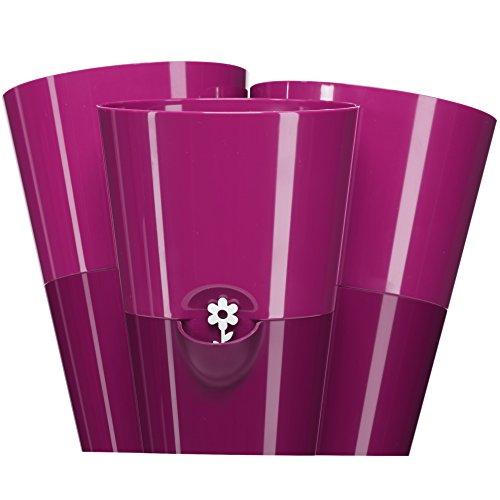 Emsa 515354 Trio Kräutertopf für frische Kräuter, Selbstbewässerung, Wasserstandsanzeiger, 27 x 25 x 21 cm, Pink, Fresh Herbs Trio