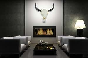 "Longhorn skull büffelkopf, buffles, motif crâne longhorn, indien, décoration murale, états-unis, des «dunord ""häng sur-inscription hab collection"