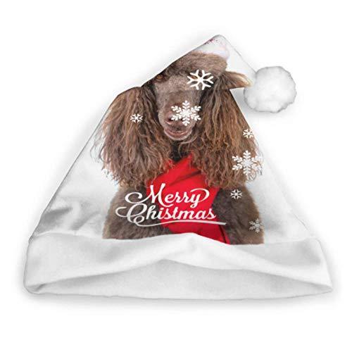 Closeup Portrait Standard Pudel Weihnachten Santa Kleinkind Weihnachtsmütze Lightup Weihnachtsmütze Erwachsene Party Neujahr Weihnachten Tag Dekoration Weihnachten Kopfbedeckungen Weihnachten Weihnac -