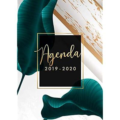 Agenda 2019/2020: 15 mois journalier 2019-20 - format A5 - octobre 2019 à décembre 2020 - planificateur, semainier simple & graphique, motif Feuille de Palmier Tropical or et blanc