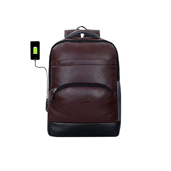 Leather-World-Premium-Breathable-Anti-Theft-Zipper-Faux-Leather-30-Ltrs-156-Laptop-Backpack-Mature-Bag-with-USB-Charging-Port-Brown