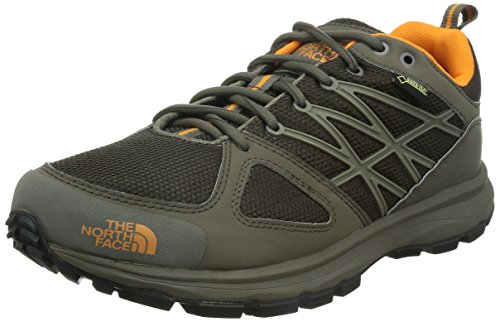 The North Face M Litewave GTX, Zapatillas de Trail Running, Color...