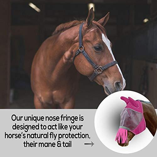 cypressen Fliegenmaske Pferd Basic Volles Gesicht, Mit Ohrenschutz, Pferde Zubehör Fliegenschutz Pferd