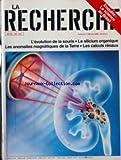 Best Calculs rénaux - RECHERCHE (LA) [No 199] du 01/05/1988 - LA Review