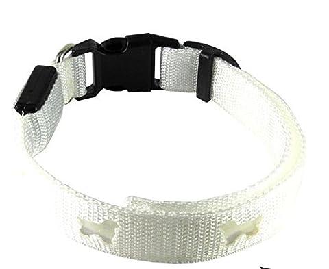 Uni meilleure Sécurité Collier LED pour chiens, voyant clignotant s'allume le collier de sécurité lumineux clignotant Collier de chien Garde votre chien visible la nuit lueur LED Lumineux de sécurité Colliers pour chien