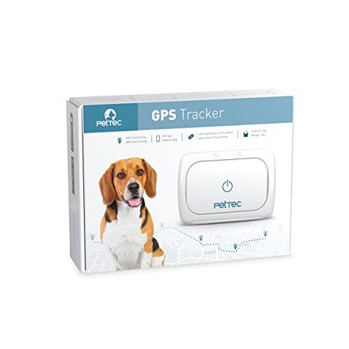 PetTec GPS Tracker für Hunde & Katzen inkl. 1 Jahr gratis Sim-Nutzung,Halsband, Sim-Karte im D1-Netz, Ortungsgerät mit App für - Tracking Gerät Für Tiere