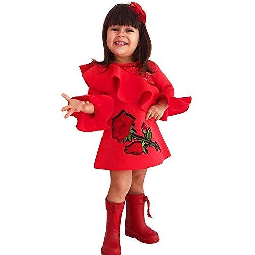TPulling Kleinkind-Baby-Mädchen Rüschen Rose Blumenstickerei Flae Sleeve Kleider Outfits