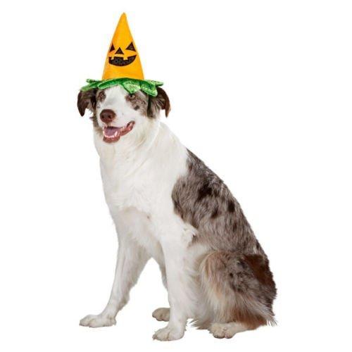 GREAT CHOICE Große Auswahl Hund Welpen Katze Kätzchen Pet Pumpkin Hat Halloween-Kostüm klein NWT,