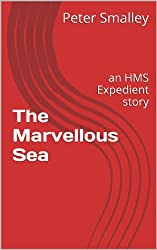 The Marvellous Sea: an HMS Expedient story (HMS Expedient series Book 7)