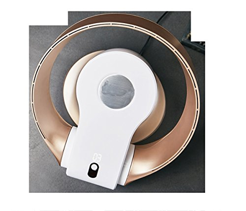Huaishu Leafless Electric Fan Wand-Ultra-Leise Digitale Fernbedienung (Farbe : Gold)