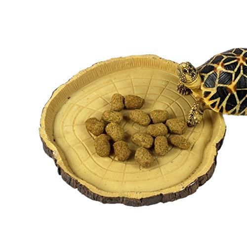 KICCOLY Platos Agua Tortuga Repelente Comederos Amphibians