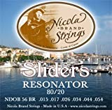 Nicola marca chitarra risonatore Slider 16–56, made in USA