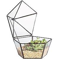 NCYP Moderno hecho a mano balcón Pentágono Forma Claro Planta suculenta terrario de cristal geométrico musgo maceta pieza central para mesa de café boda maceta decorativa de flor de pantalla