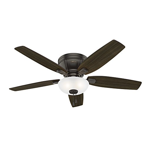 Hunter Fan Company 53379 Kenbridge 52 Ceiling with Light, Large, Noble Bronze