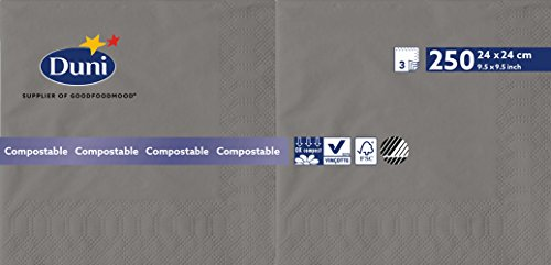 Duni 1684023-lagig Tissue Servietten, 24cm x 24cm, granit grau (Packung 2000)