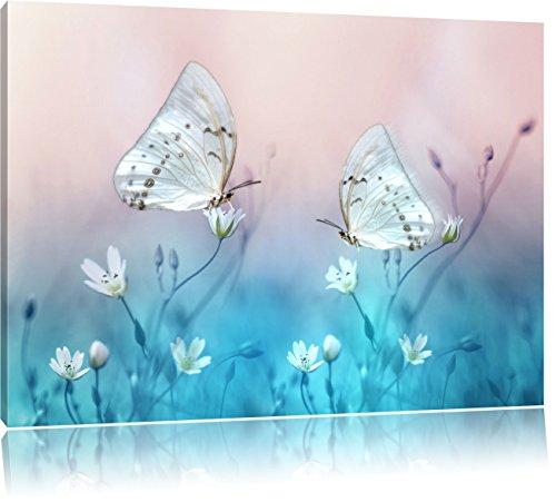 due bella farfalla bianca su piccoli fiori, formato: 80x60 su