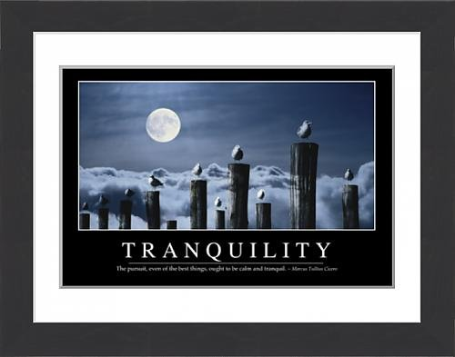 framed-print-of-tranquility-inspirational-quote-and-motivational-poster