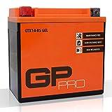 GP-PRO GTX14-BS 12V 14Ah GEL-Batterie (Ähnlich YTX14-BS / 51214) (Wartungsfrei & Versiegelt) Akkumulator Motorrad Motorradbatterie