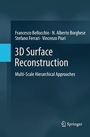 3D Surface Reconstruction: Multi-Scale Hierarchical Approaches