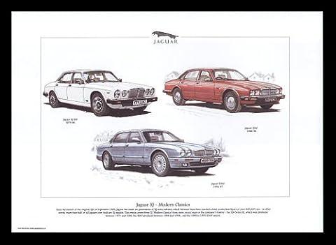 Jaguar XJ classique moderne voitures–XJ S3, Xj40, X300–Art Print