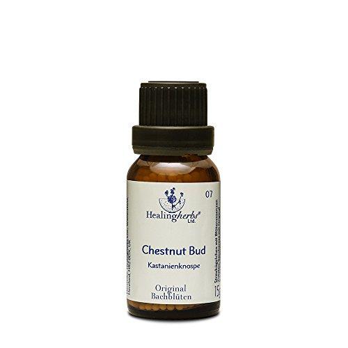 Healing Herbs Bachblüten Chestnut Bud Globuli, 15 g