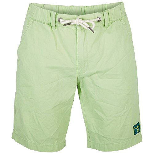 Chiemsee Herren Chino Shorts Lyndon Summer Green