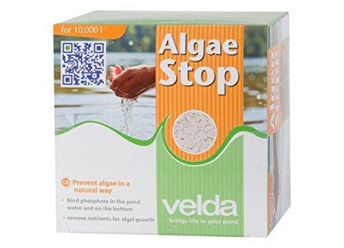 Velda - Algae Stop 500G 10m3 - 120040