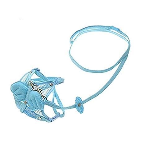 SSB ailes d'ange Harnais de sécurité pour chien avec laisse réglable assorti Bleu