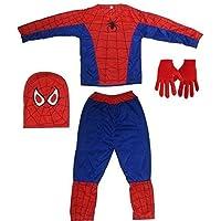 Bright Pickup Super Hero Dress + Glove +Mask Costume for Boys (2-3 Years) (2-3 Years)