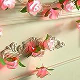 Lichterkette Außen,gaddrt Rose LED Fenster Vorhang Lichter String Lampe Party-Dekor Mit 20 LED-Perlen