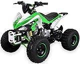 Kinder Quad S-14 125 cc Motor Miniquad 125 ccm grün/weiß Speedy