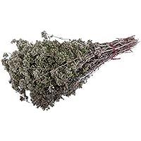 ARISTOS aromatischer griechischer Oregano | nachhaltig angebauter Wildwuchs | gerebelt + reine Oreganoblüte | Griechenland (40 g)