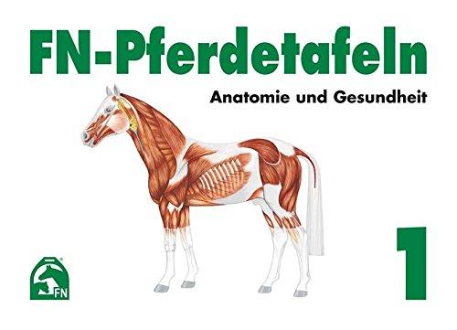 FN-Pferdetafeln Set / FN-Pferdetafeln Set 1: Anatomie und Gesundheit