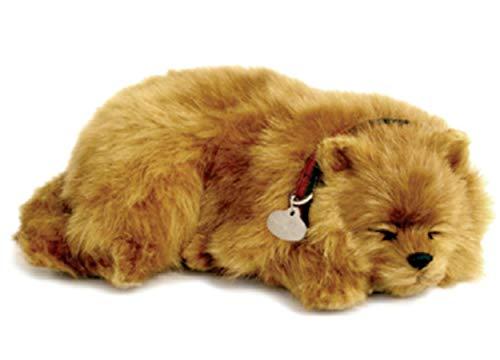 Perfect Petzzz Hundebaby Welpen Katzen Babies atmender Hund Haustier Verschiedene Hunde Rassen (Zwergspitz/ Pomeranian) -