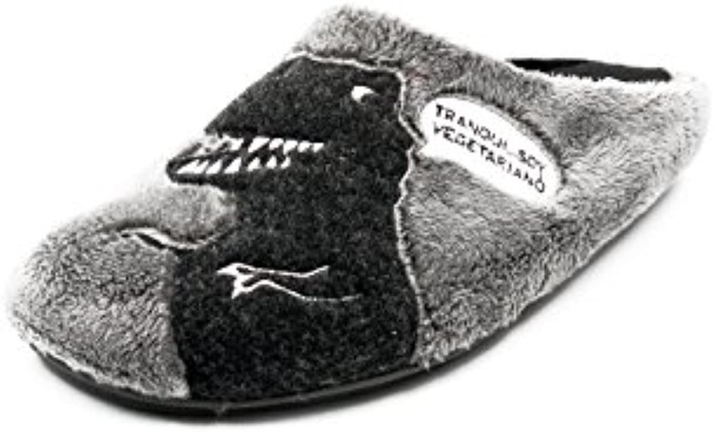 Vul-ladi Zapatilla Hombre Para Andar Por casa Invierno-Alaxka Color Gris, Estampado Dino - 1606-7 (40, Gris)